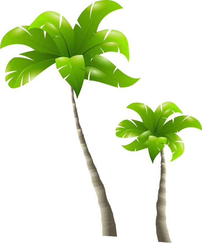 Clipart - Palm Trees - Palmiers