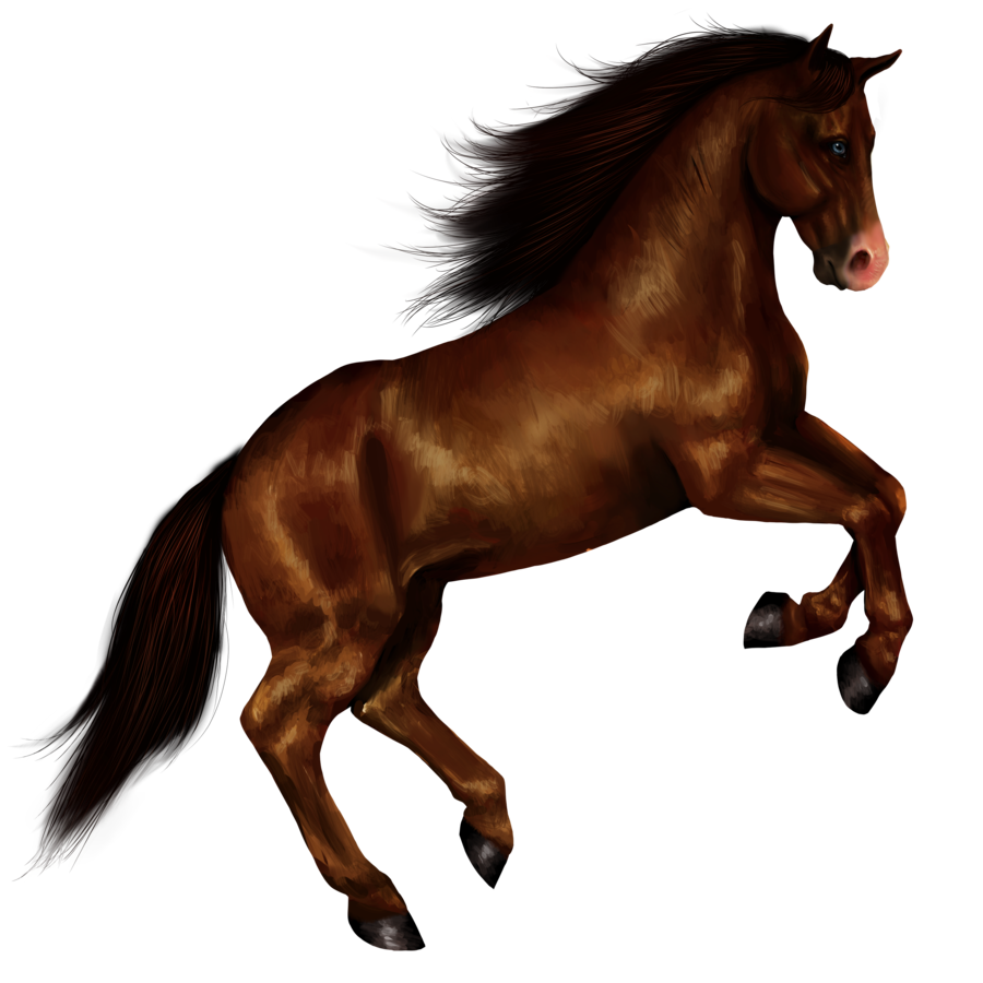 The Brown Horse. - ClipArt Best - ClipArt Best Running Horse Png