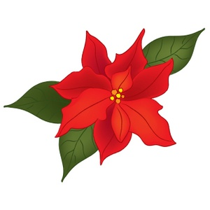 Poinsettia Clipart Image - Christmas Poinsettia Flower ...