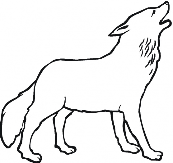 Howling wolf outline clipart best for Howling wolf coloring pages