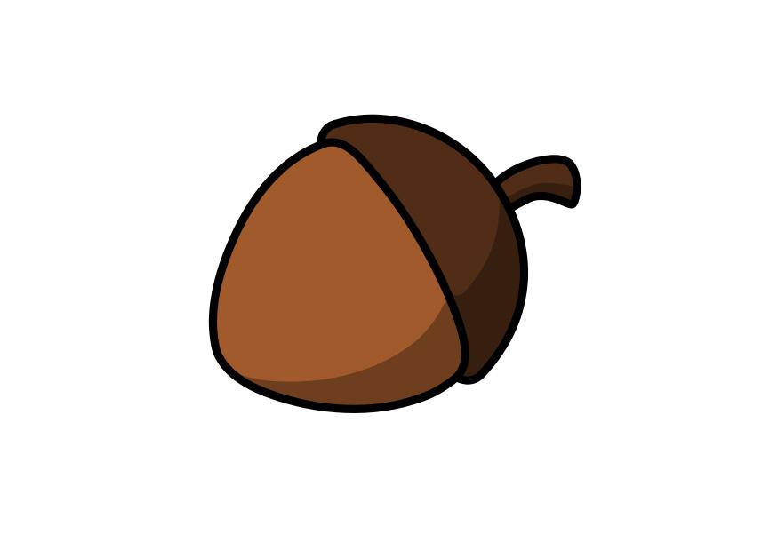 acorn pics   clipart best