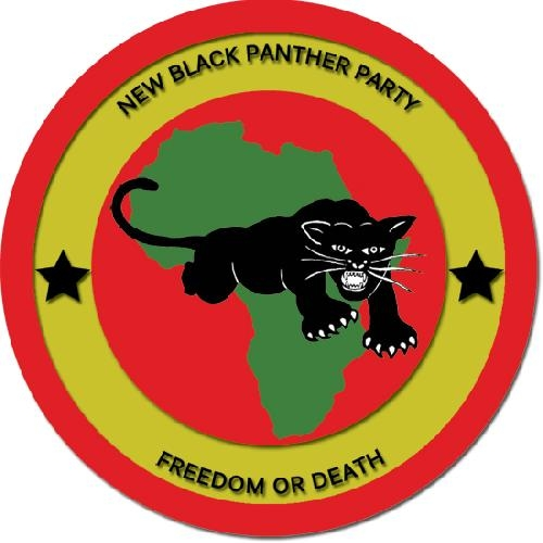 black panthers essay