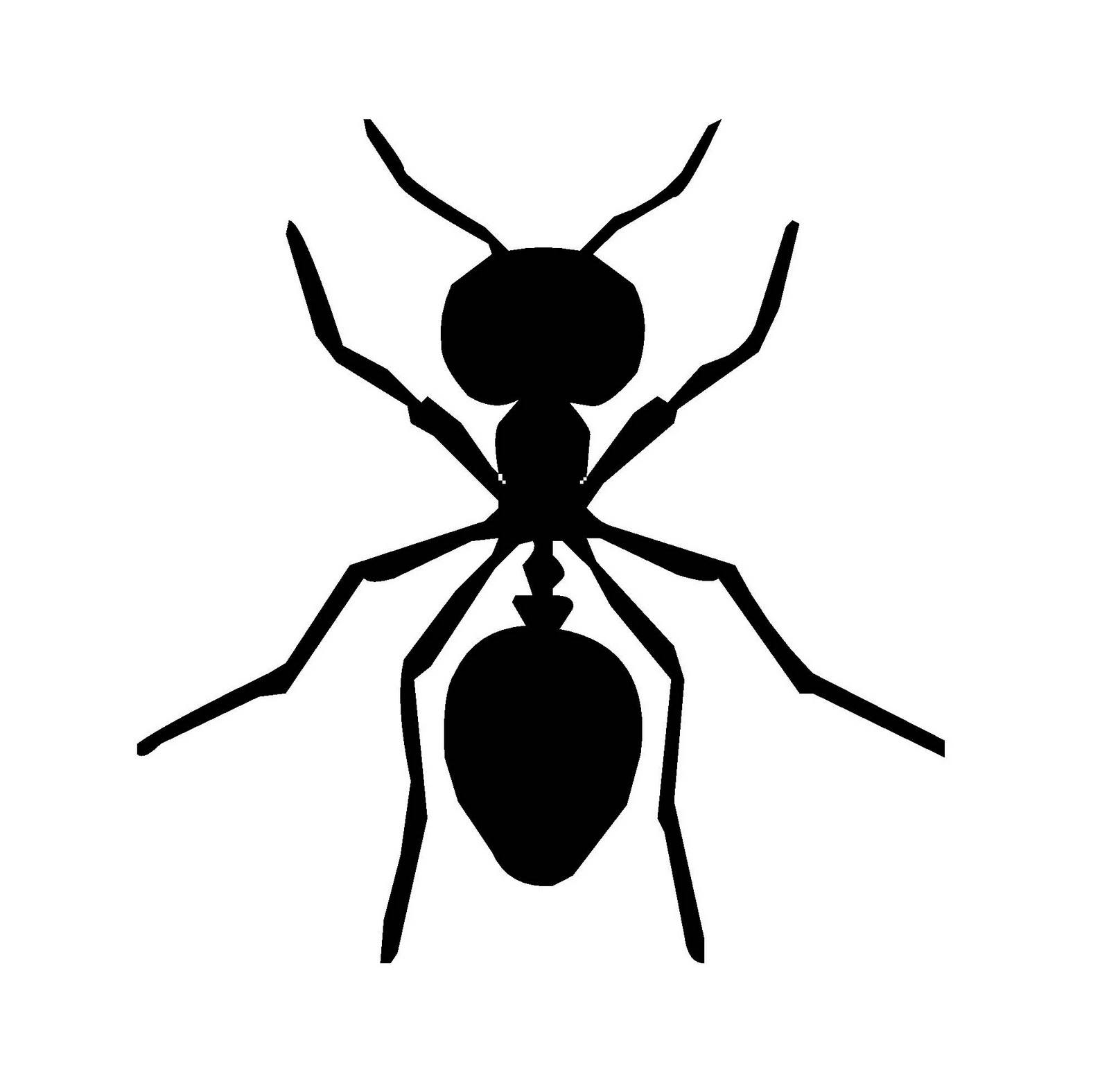 free ant clipart black and white - photo #37