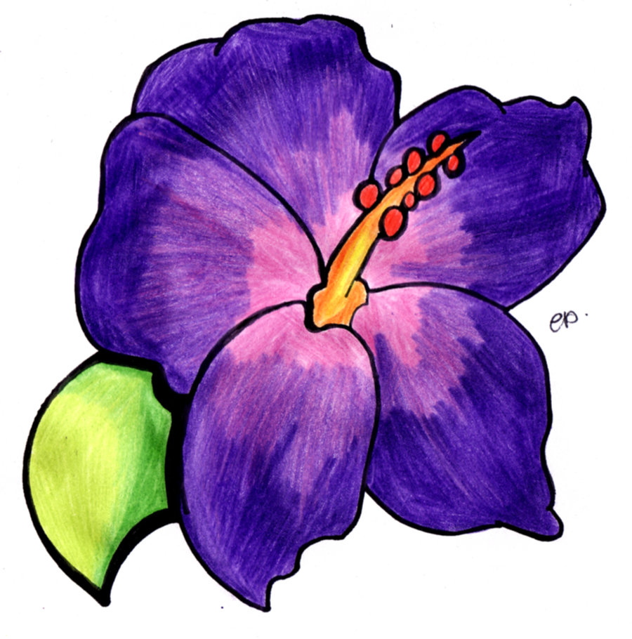 Purple Flower Drawing - ClipArt Best