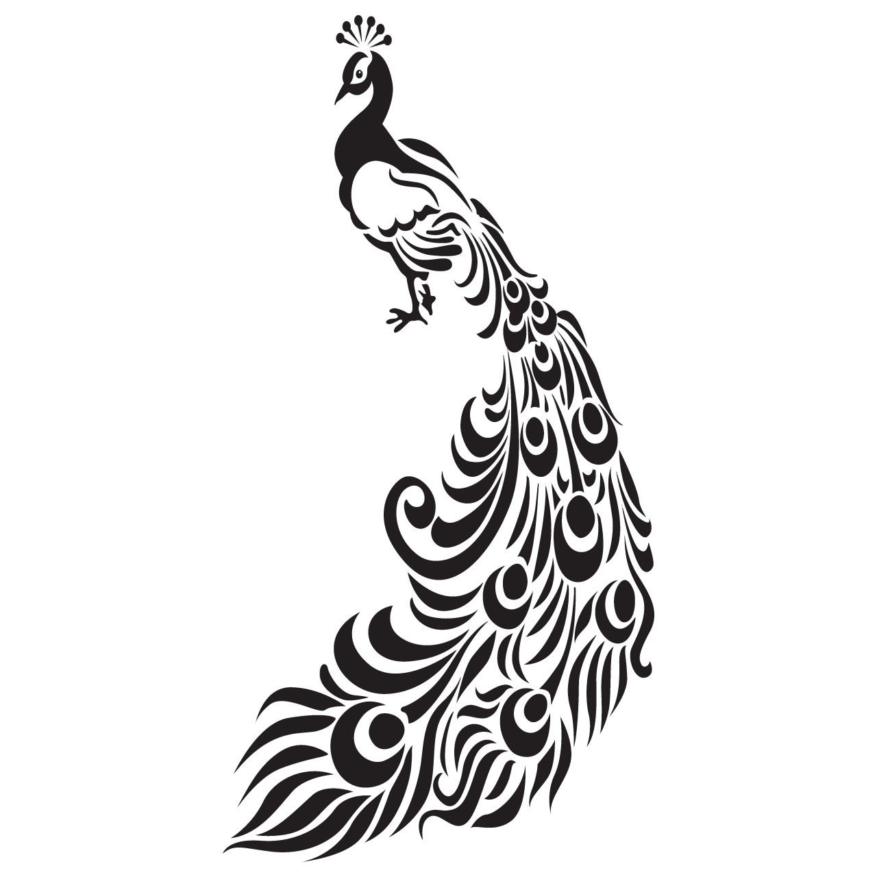 Line Drawing Peacock : Pictures and drawings of peacocks clipart best