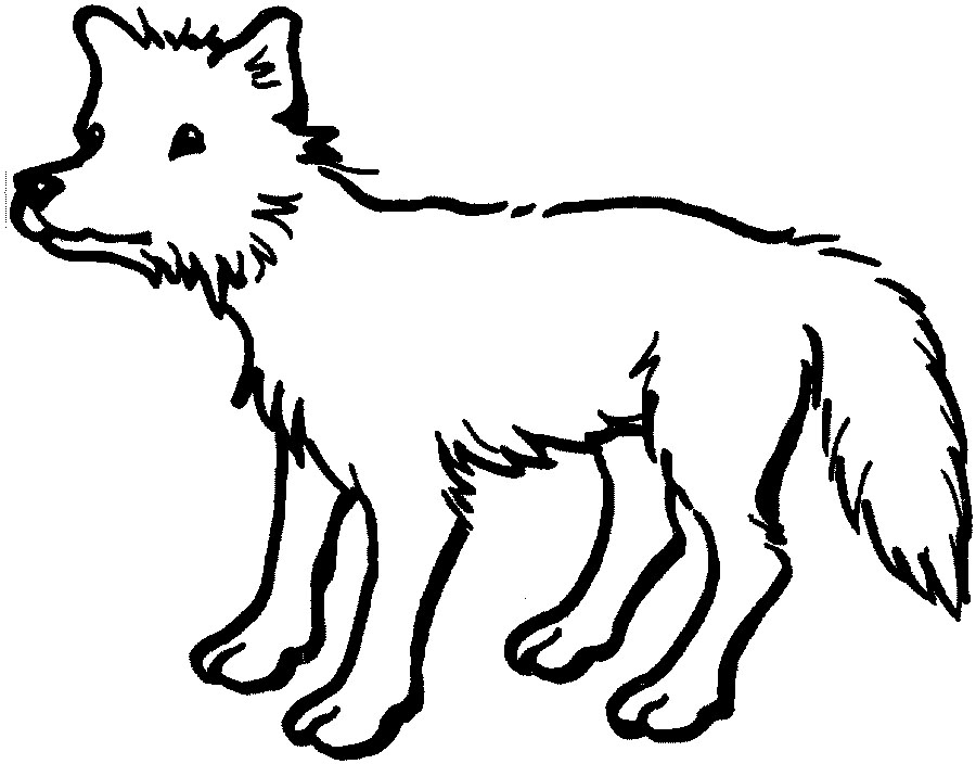 Clip Art Coyote Clipart coyote clipart best clip art best