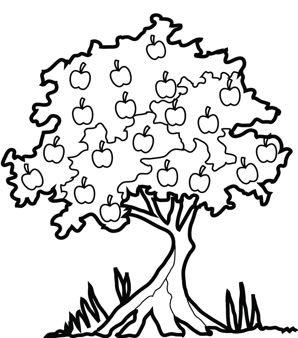 Tree Coloring Pages Apple