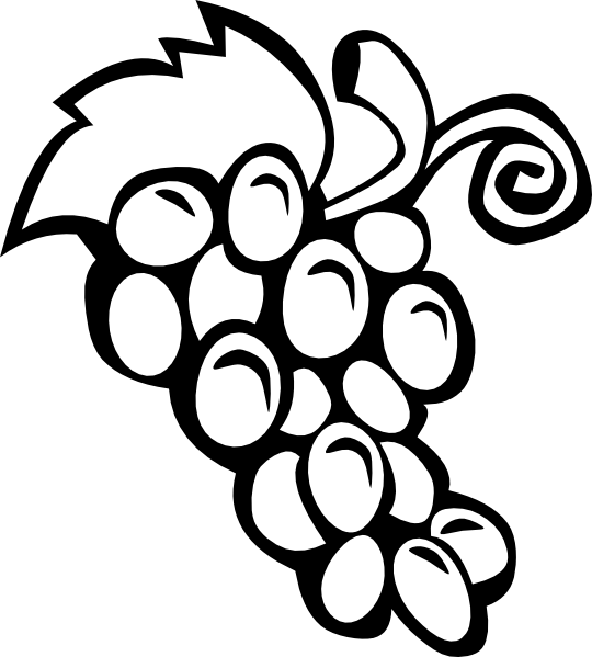 Line Drawing Fruit : Line drawings of fruit clipart best
