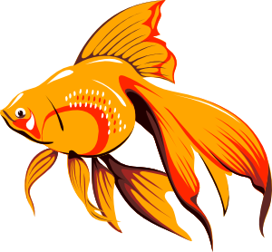 find rc with Tropical Fish Clip Art Free on Spring Fling Clip Art in addition Pictures besides Animated Camra Clip as well Cornhole Clipart besides Hart Cartoon.