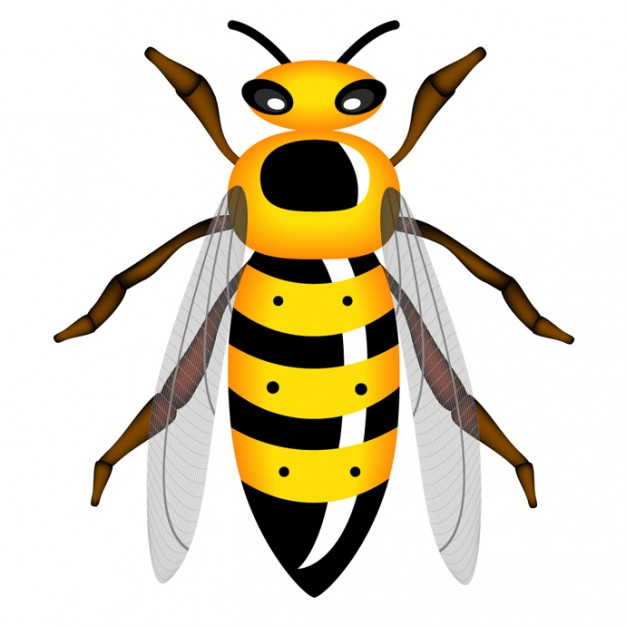 free clip art yellow jacket - photo #40