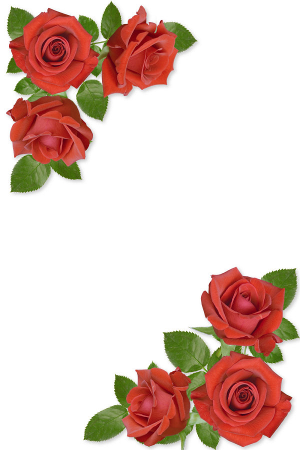 Designs Of Border With Red Roses