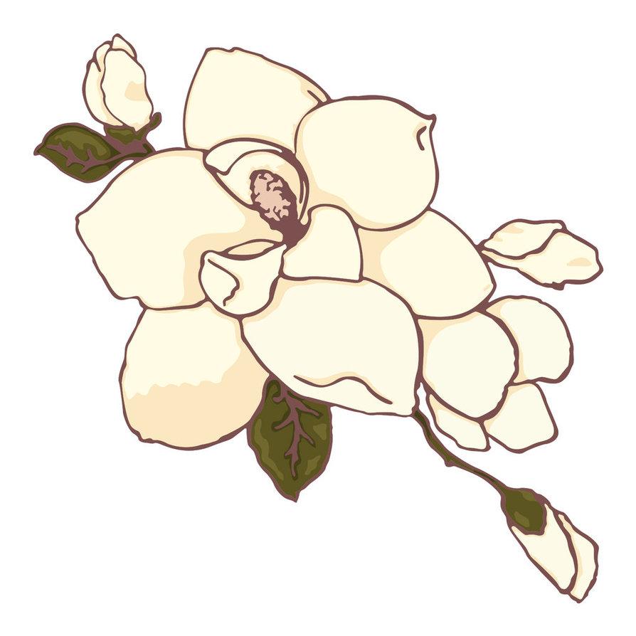 Clip Art Magnolia Clipart magnolia clip art clipart best tumundografico