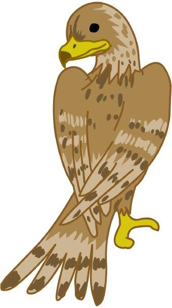 falcon clipart clipart best falcon clipart black & white falcon clip art images