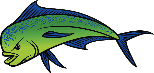 Cartoon Of A Dorado Fish Clip Art, Vector Images & Illustrations ...