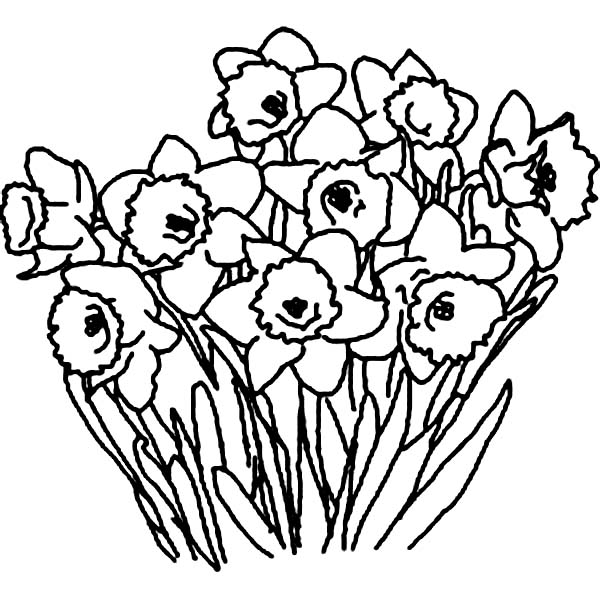 Coloring Pages Of Flower Bouquet