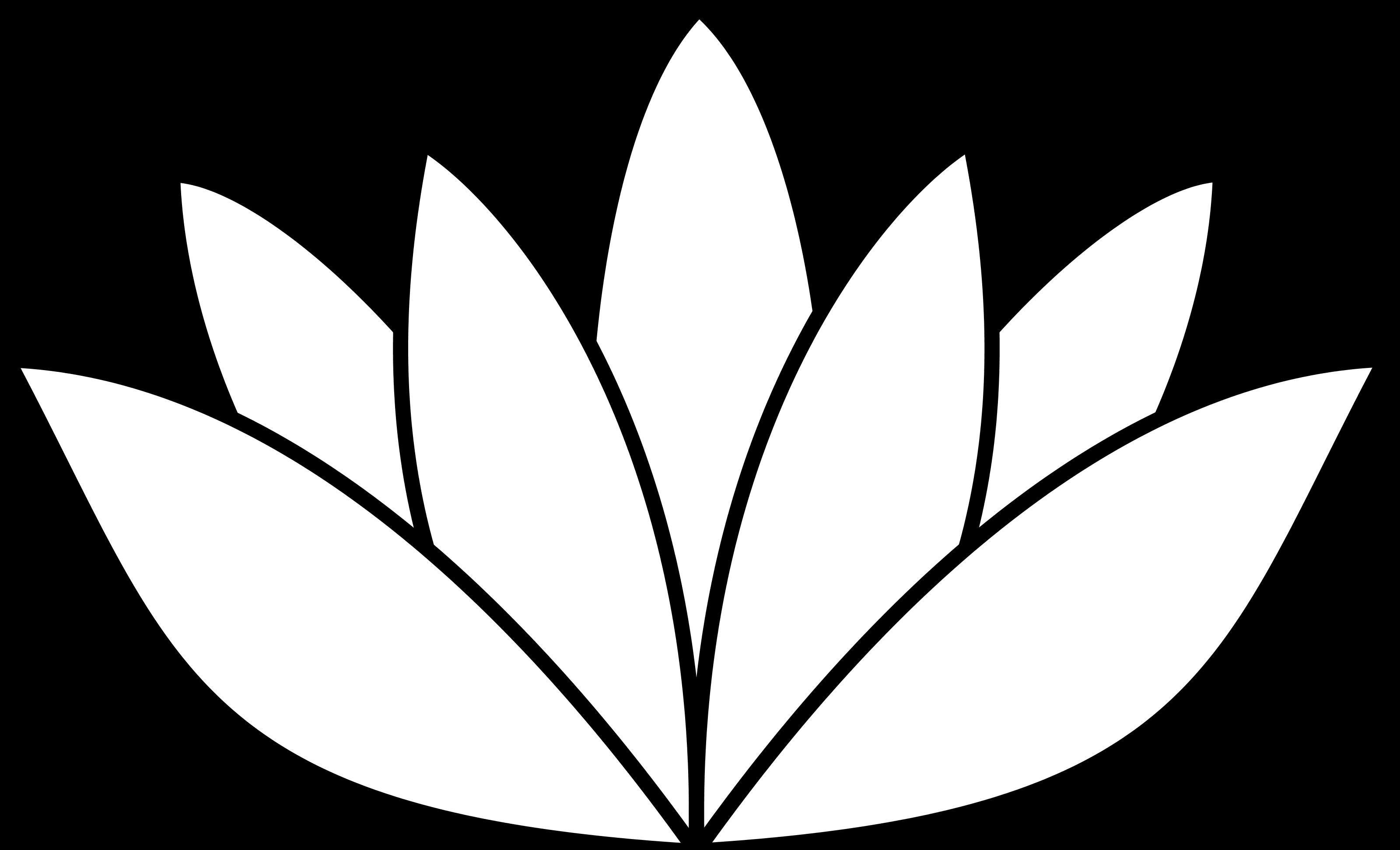 Line Art Lotus Flower : Lotus line drawing clipart best