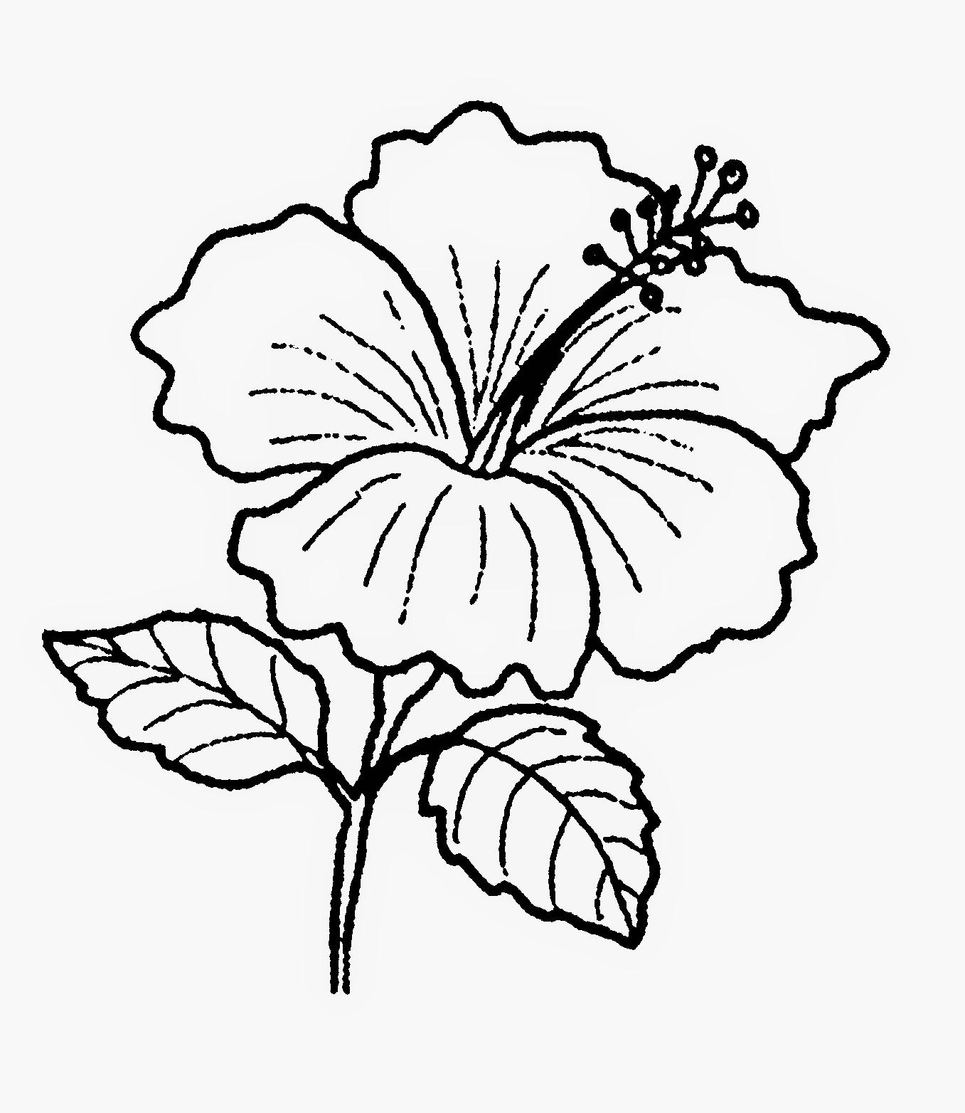 Lukisan Bunga Raya Bunga Kebangsaan Cikimm Com