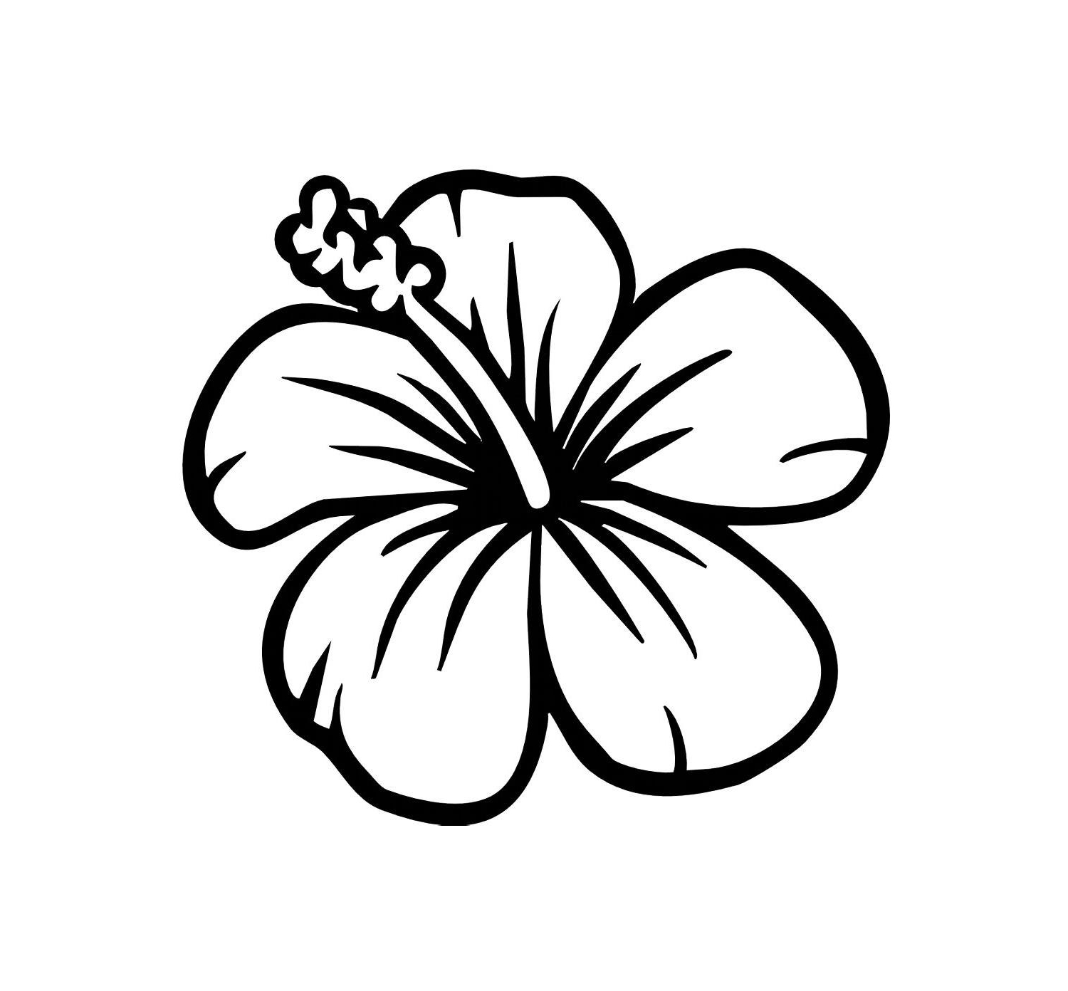 Hibiscus Flower Line Drawing : Hibiscus flower drawing clipart best