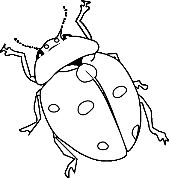 Line Drawing Lady : Lady bug line drawing clipart best