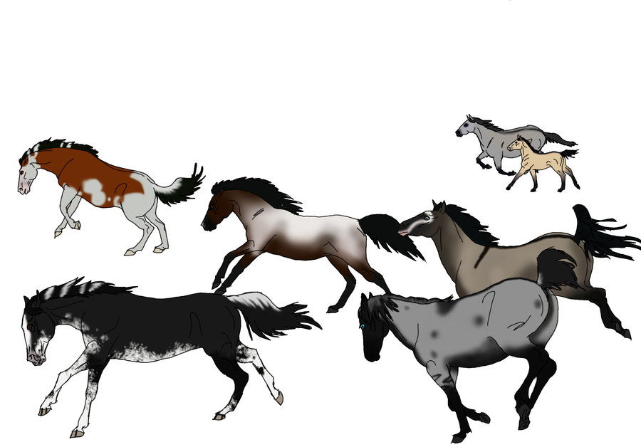 Wild Horse Drawings - ClipArt Best
