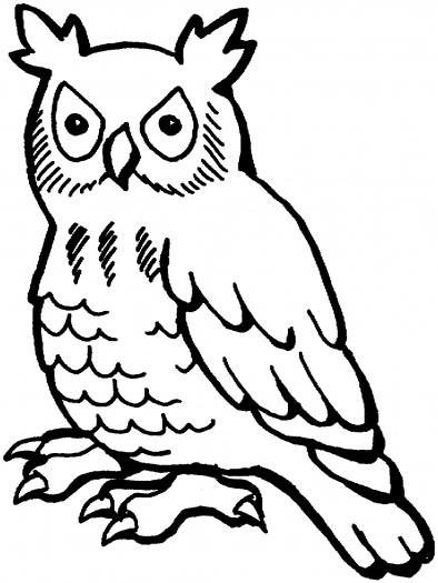 unique coloring pages owl ornate - photo#33