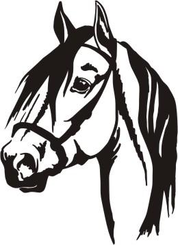 Quarter Horse Face Silhouette - ClipArt Best
