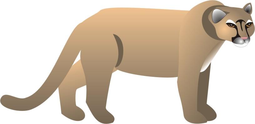 Watch more like Walking Cartoon Cougar Animal