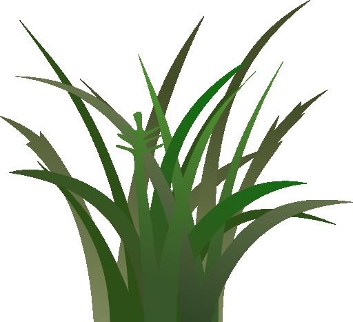 Clipart Panda Grass