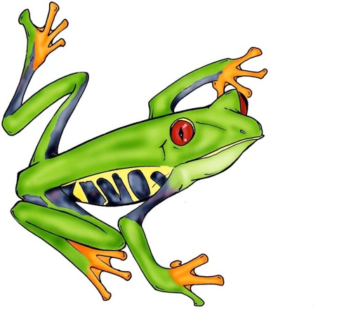 Cartoon Tree Frog - ClipArt Best