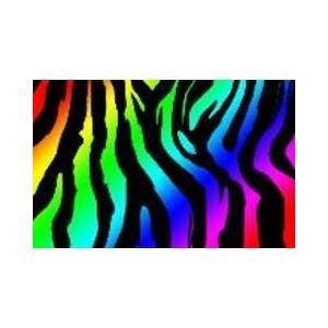 myxer wallpaper rainbow zebra polyvore clipart