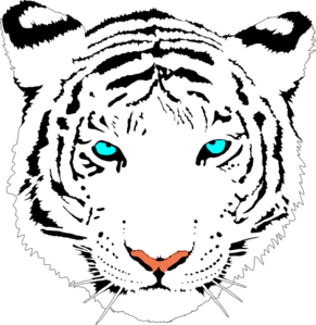 coloring page tigers download