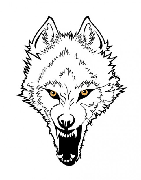 Line Drawing Angry Face : How to draw a angry wolf face clipart best