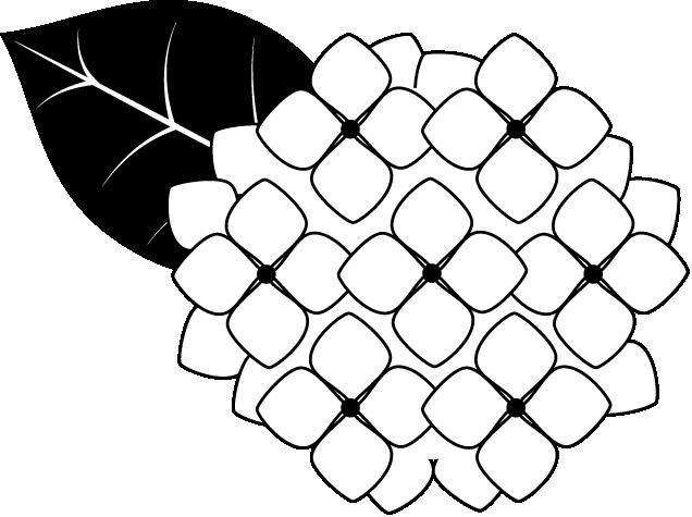 Hydrangea Clip Art - ClipArt Best
