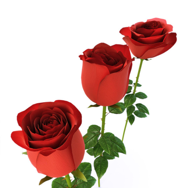 Free Animated Clip Art Roses