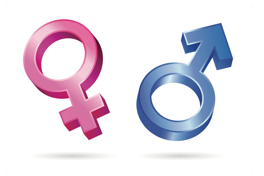 male s and females have different abilities