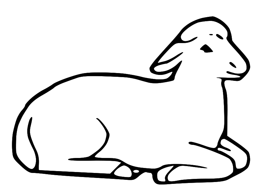 Line Drawing Images Of Sheep : Lamb line drawing clipart best