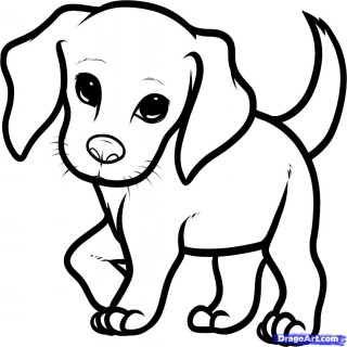 Tag For Cute Puppies Pictures To Draw Litle Pups