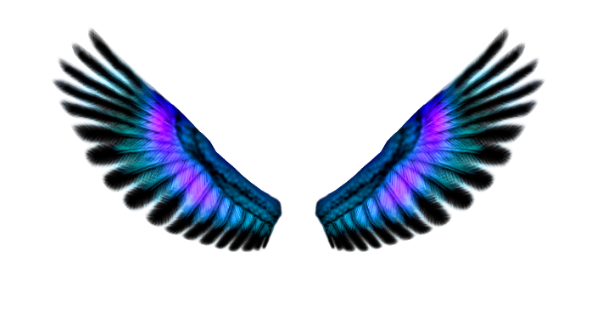 Wings 4 ~ in png form in Angel, Fairy, Butterflies, Birds etc. Forum