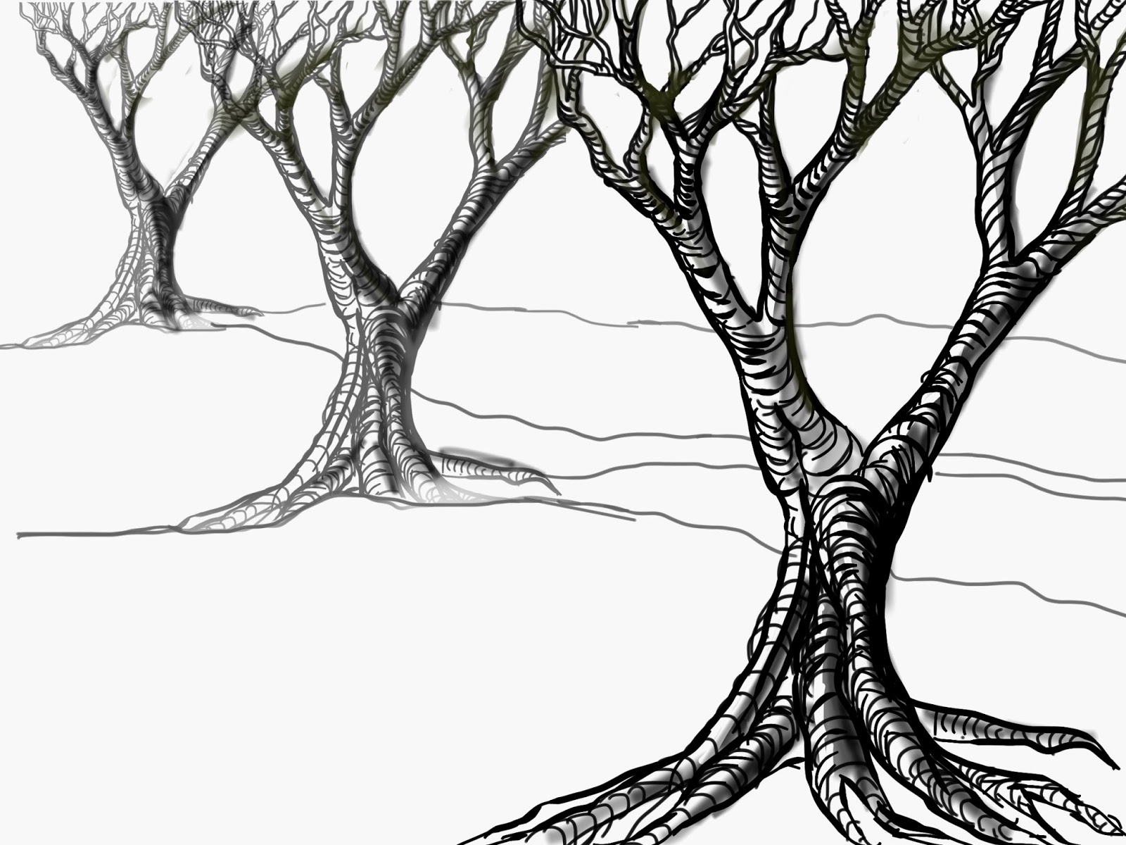 Line drawing of tree clipart best for Best tree drawing