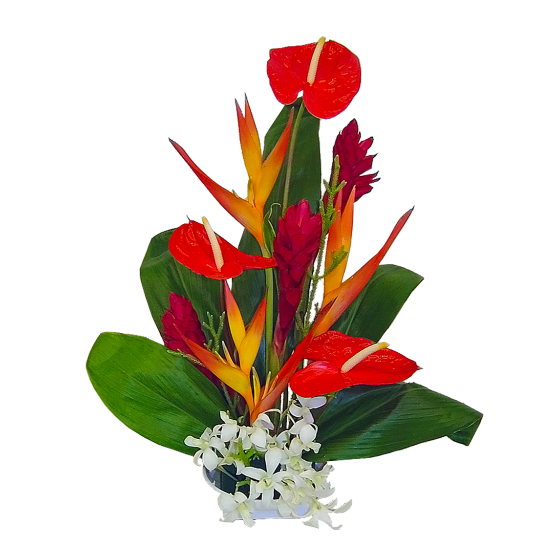Hawaii State Flower ClipArt Best