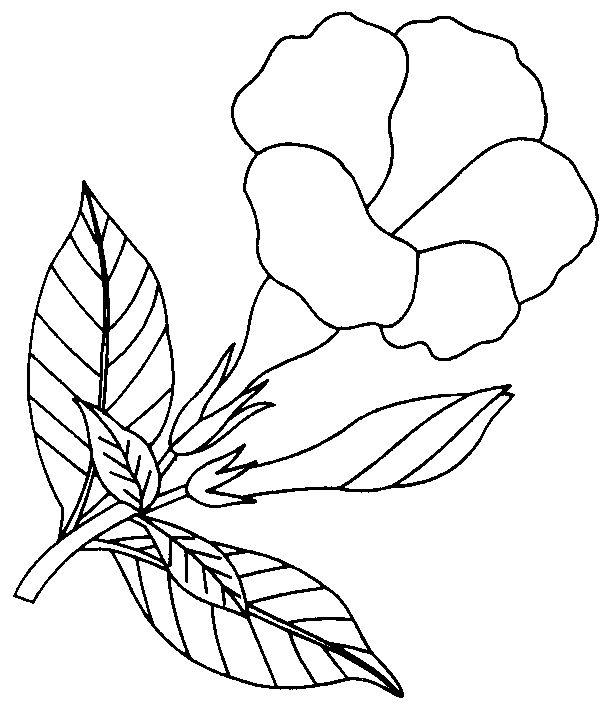 download clip art bunga - photo #22