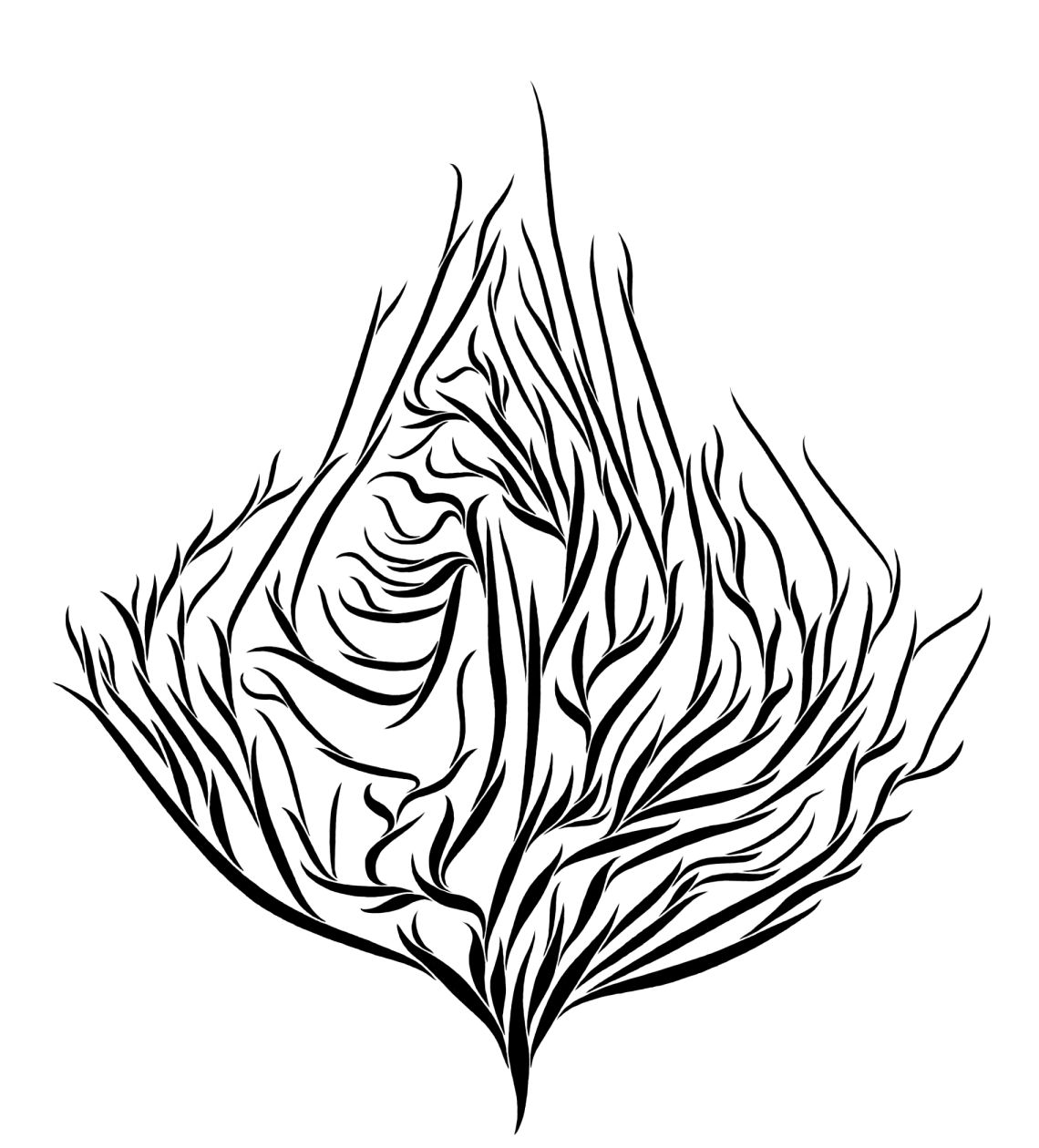 Line Art Leaves : Line drawings of leaves clipart best