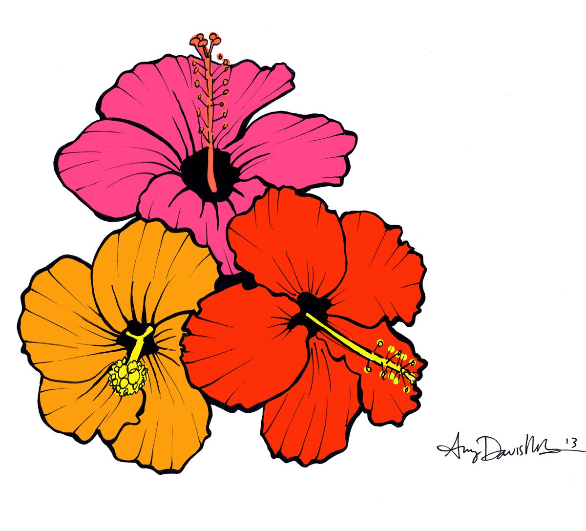 hibiscus flower drawing clipart best hawaiian flower clip art coloring pages hawaiian flower clip art template