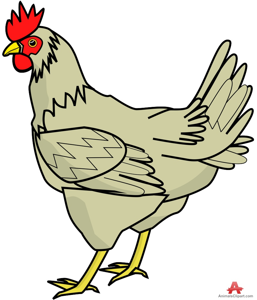 chicken clipart graphics - photo #42