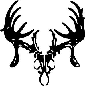 26 white tailed deer skull free cliparts that you can download to you ...
