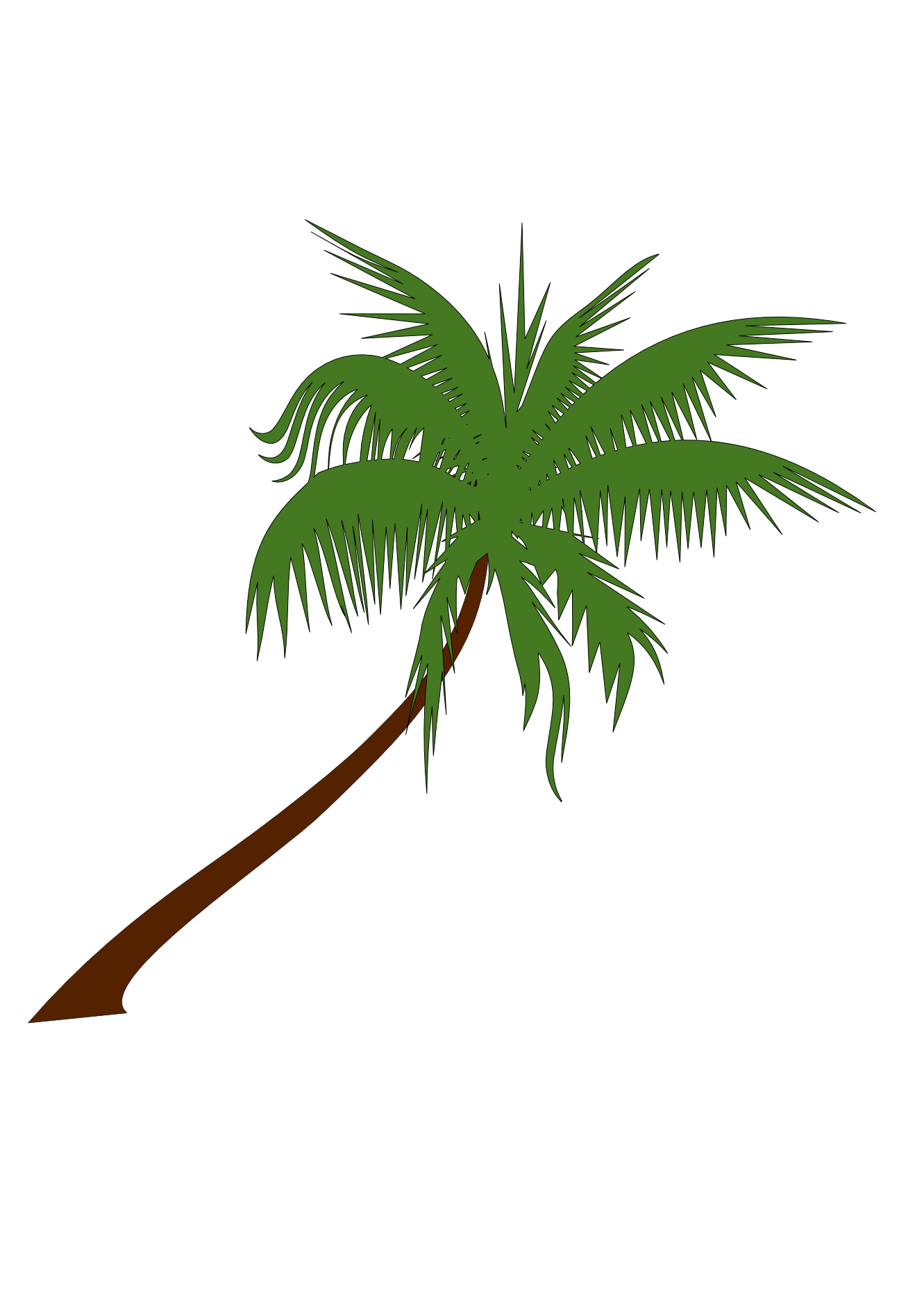 Line Drawing Palm Tree : Palm tree line drawing clipart best