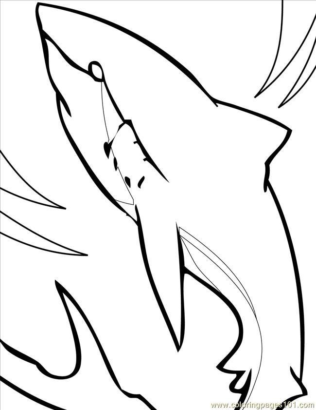 Great White Shark Outline - ClipArt Best