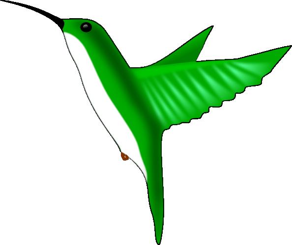 Humming Bird clip art - vector clip art online, royalty free ...