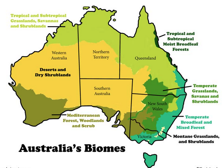 Physical Map Of Australia For Kids - ClipArt Best