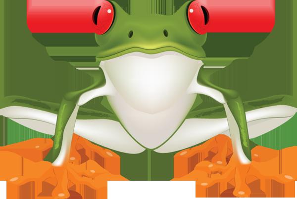Tree Frog Clip Art - ClipArt Best